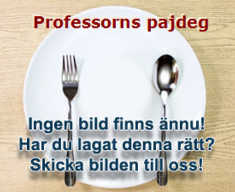 Professorns pajdeg