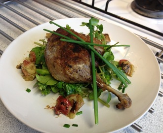 Confit duck leg/ watercress and herb salad / roasted rhubarb/ fig balsam viniagrette