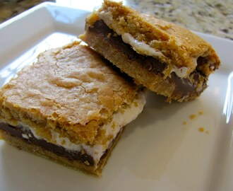 s'mores bars party!