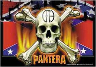 Flagga-pantera