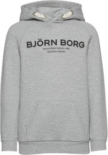 Hood Borg Sport Borg Sport Hoodie Grå Björn Borg
