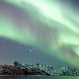 Northern Light Adventure