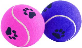Beeztees Tennisboll, tassavtryck, blandade färger, 10cm