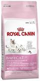 Royal Canin Babycat 34 komplett kattunge katt torr