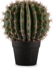 Konstväxt - Kaktus 27 cm