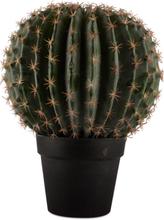 Konstväxt - Kaktus 36 cm
