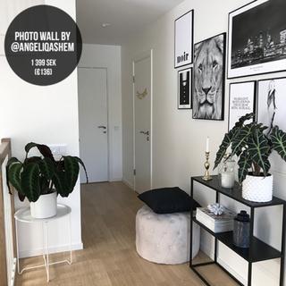 Photo wall By @angeliqashem