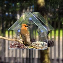 Fuglemater Hus Gjennomsiktig