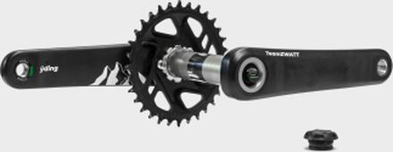 TeamZWATT Yding karbon Effektmätare DM, 30mm axel, 170mm