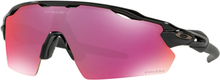 Oakley Radar EV Pitch Glasögon Polished Black/Prizm Field