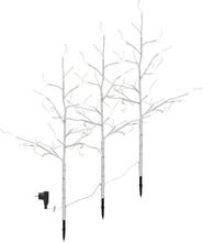 Tobby Tree Björk LED 3x90 cm