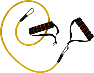 Bodylab Elastic Home Trainer