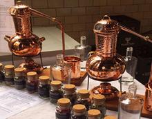 Gin Brennereifuehrung mit Verkostung in Berlin