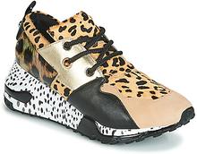 Steve Madden Sneakers CLIFF Steve Madden