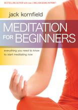 Meditation For Beginners 9781604070910