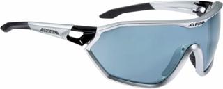Alpina - Alpina S-Way CM cycling glasses (black)