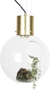 Globen Lighting - Hole Pendel XL ø30 cm, Klar/Børstet Messing