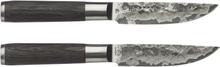 Satake - Kuro Kødknive 2pak, Stål