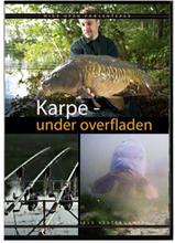 Karpefiskeri under overfladen