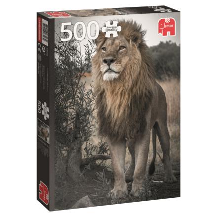 Proud Lion, 500 palaa