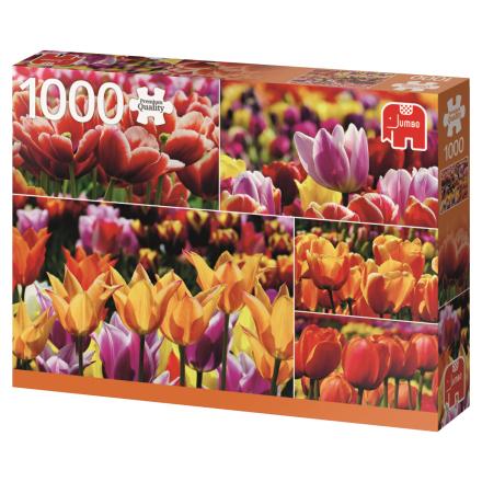 Holland Tulips 1000 palaa