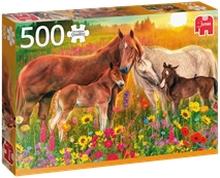 Palapeli 500 Palaa Horses in the Meadow