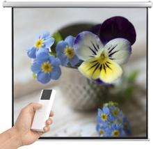 vidaXL elektrisk projektorlærred med fjernbetjening 200 x 200 cm 1:1