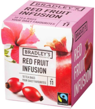 Favourites Red Fruit Infusion 11