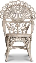 Påfågel stol - Naturrotting
