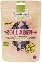 Collagen Plus 175 g
