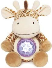 Diinglisar Wild - Night Light - Giraffe (TK2393)