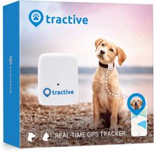 Tractive Hund GPS Hundpejl - Nr. 1 Tracker GPS Hund Halsband bilaga