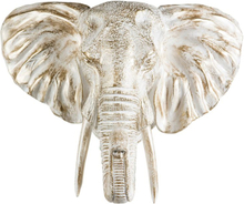 Väggdekoration Elefant - Vit/guld
