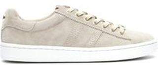 Sand Philip Hog SERENA Sneakers