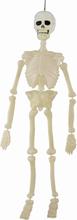 Halloween udsmykning - Skelet 60cm der lyser i mørke