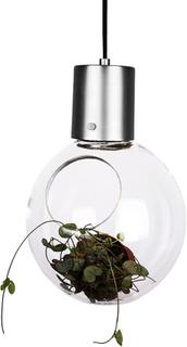 Pendel Mini Hole Klar/Borst.Krom Pendel - Globen Lighting