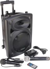 Ibiza BT8HH transportabel högtalare