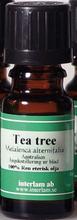 Eterisk olja - Tea-tree