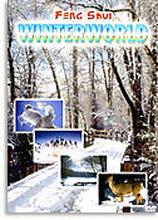 Feng Shui - Winterworld (dvd) 7619943186110