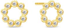 Spinning Jewelry ørestikker - Circle - Forgyldt sterlingsølv