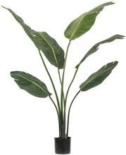 Living&more kunstig plante - Palme