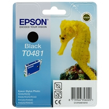 Epson T0481 Black - C13T04814010