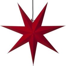 Stor julstjärna Rozen