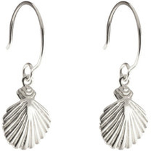 Beaches Earrings Shell, ONE SIZE