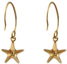 Beaches Earrings Starfish Gold, ONE SIZE