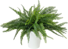 Fern bush in pot, artificial plant, 62 leaves, 48cm