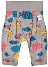 Indikidual Fish Haremsbyxor Grå Multifärg 12-24 months 0f31f64e26900