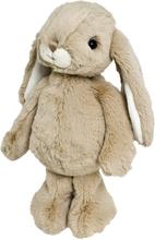 Kanini brun, 25 cm, Bukowski