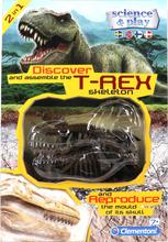 Dinosauriefossil T-Rex - 51% rabatt