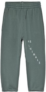 The Animals Observatory Sculptor Pants Grey Red The Animals 6 år